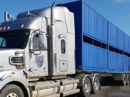 Page Livestock Trucking